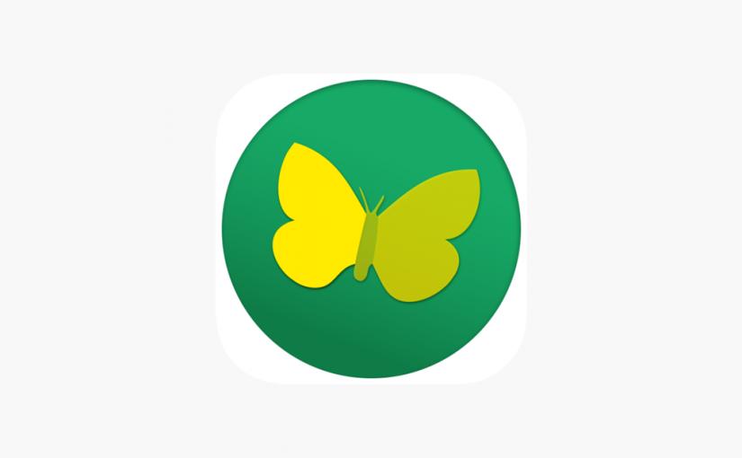 Tuto: configurer l'appli Pronote sur son smartphone
