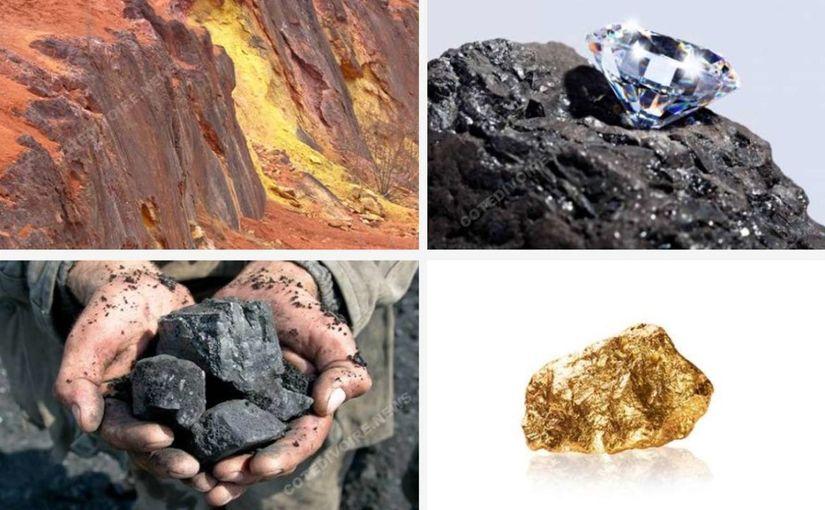 1ère Bac Pro: les ressources naturelles en Afrique